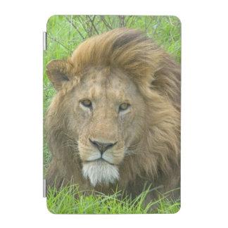 Lion Male Portrait, East Africa, Tanzania, iPad Mini Cover