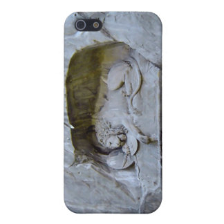 Lion Monument, Lucerne Case For iPhone 5/5S