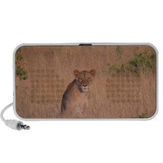 Lion Notebook Speaker