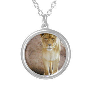 Lion on a rock looking at camera necklace