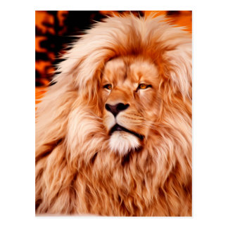 Lion Orange African Sky Photo Paint Postcard