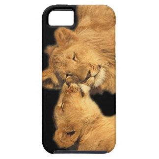Lion Pair iPhone5 Case iPhone 5 Case
