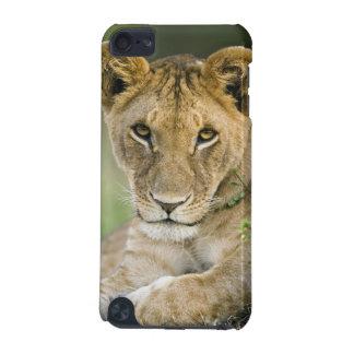 Lion, Panthera leo, Masai Mara, Kenya iPod Touch 5G Cover