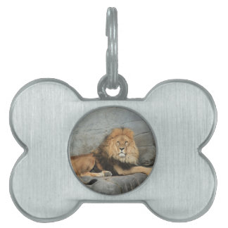 Lion Pet Tag