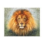 Lion Photograph Paint Art image Stretched Canvas Print