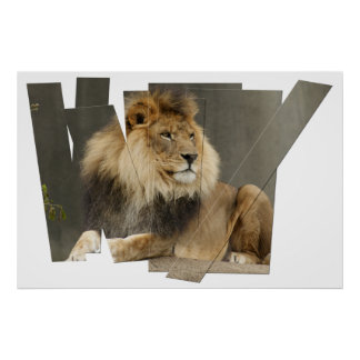 LION PIECES - PHOTO CUTUP AND REARRANGED POSTER