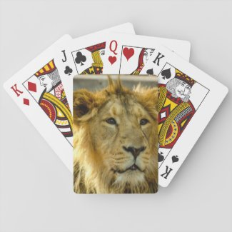 Lion Playing Cards
