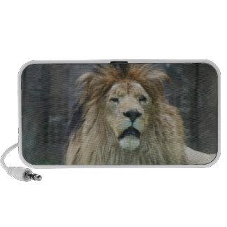 Lion Portable Speakers