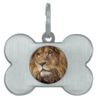 Lion portrait pet name tag