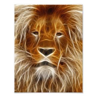 Lion Portrait Art Photo