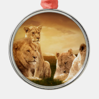 Lion pride Silver-Colored round decoration