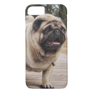 Lion Pug On The Stairs iPhone 7 case