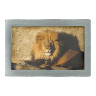 Lion Rectangular Belt Buckle