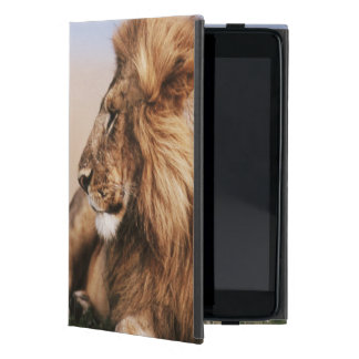 Lion resting in grass iPad mini cover