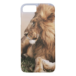 Lion resting in grass iPhone 7 case