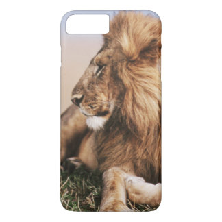 Lion resting in grass iPhone 8 plus/7 plus case