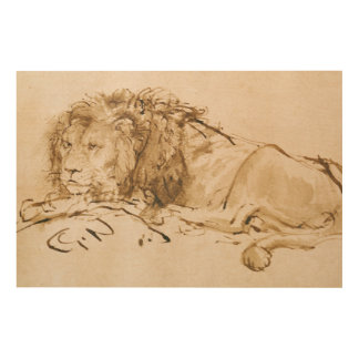 Lion Resting (pen and ink on paper) Wood Print