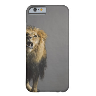 Lion roaring barely there iPhone 6 case
