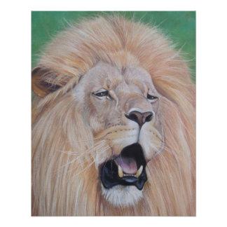 lion roaring big cat wildlife realist art