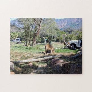 Lion Roaring | Wild Animal Park Puzzle
