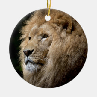 Lion Round Ceramic Decoration