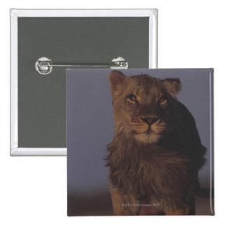 Lion Running 15 Cm Square Badge