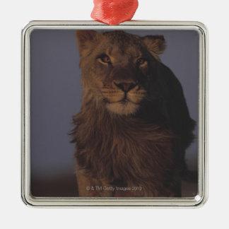 Lion Running Christmas Ornament