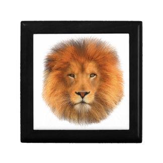 Lion's Mane Gift Box