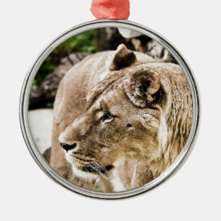 Lion Silver-Colored Round Decoration
