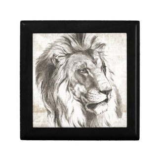 Lion Sketch Style Gift Box
