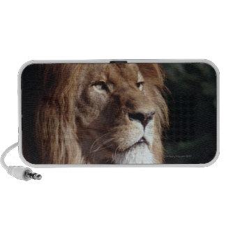 lion mini speaker