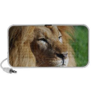 Lion Speaker System