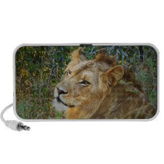Lion PC Speakers