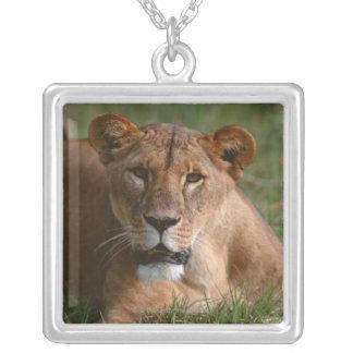 Lion Square Pendant Necklace