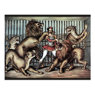 Lion Tamer In Cage With Lions Circus Poster Postcard