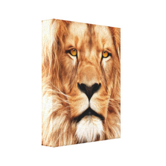 Lion The King Photo Painting Gallery Wrapped Canvas