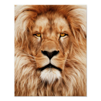 Lion The King Photo Painting Poster