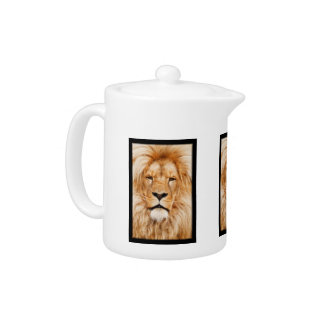 LION THE WILD
