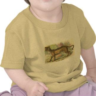Lion-Tiger  (Felis leo Felis tigris hybrid) T-shirt