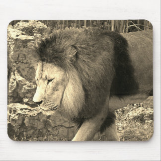 Lion Walking - Mouse Mat