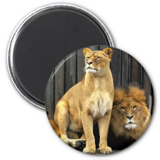 Lion - Why are you sitting on Me? 6 Cm Round Magnet