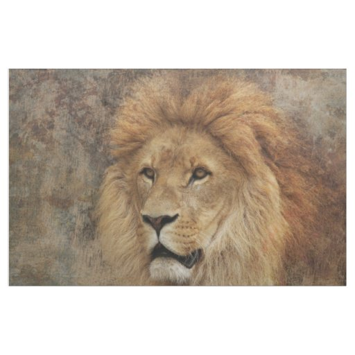 Lion Wildlife Africa Nature Fabric