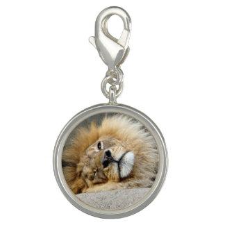 Lion Wink Charm Bracelet