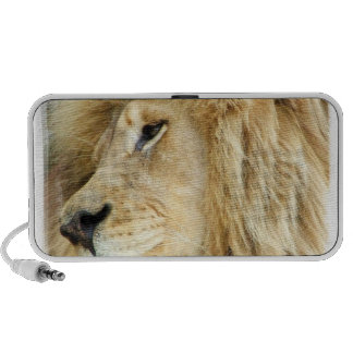 Lion with Thick Mane Speakers