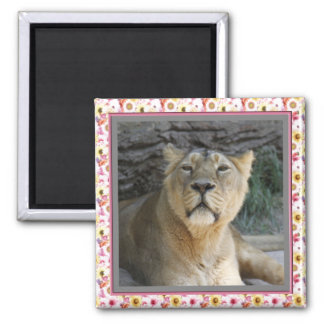 Lioness 215A 2 Inch Square Magnet