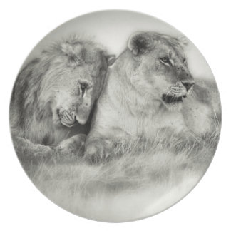 Lioness and son sitting and nuzzlingin Botswana Plate