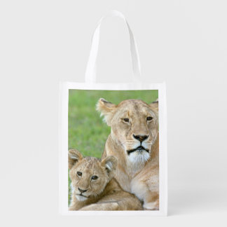 Lioness and Two Cubs, East Africa, Tanzania,