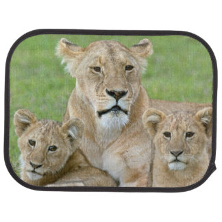 Lioness and Two Cubs, East Africa, Tanzania, Car Mat