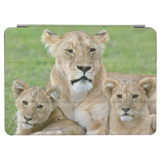 Lioness and Two Cubs, East Africa, Tanzania, iPad Air Cover