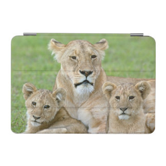 Lioness and Two Cubs, East Africa, Tanzania, iPad Mini Cover